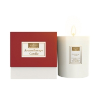 Anjou香薰蜡烛 100%天然大豆蜡和棉芯200g